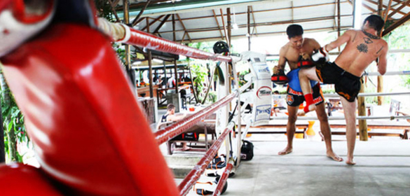 TIGER MUAY THAI & MMA CAMP