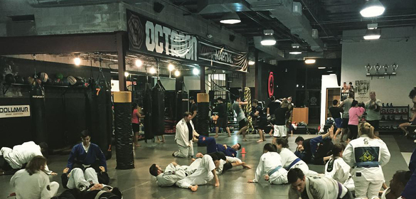 Octagon MMA center