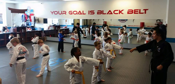 PRO Martial Arts Lakewood
