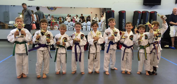 Stapleton Karate center